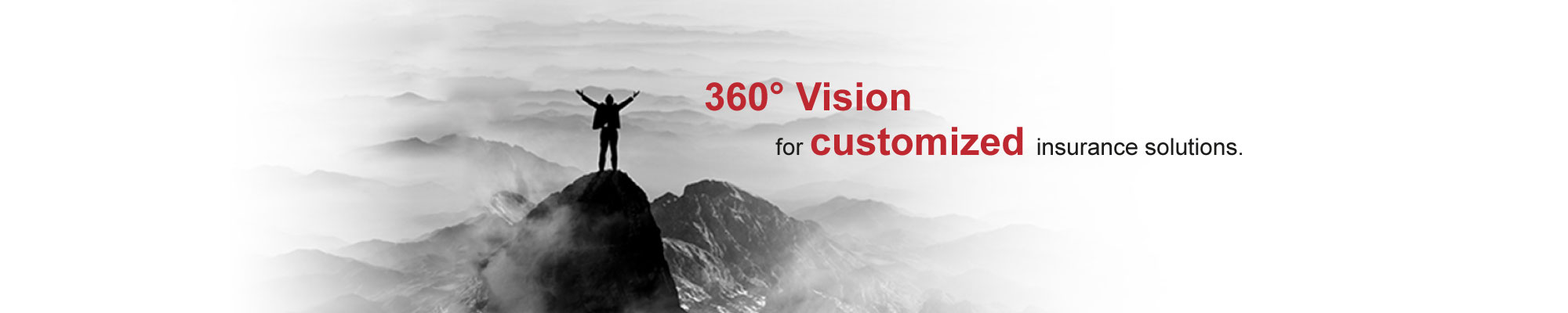 360 degree vision for customized insurance solutions.